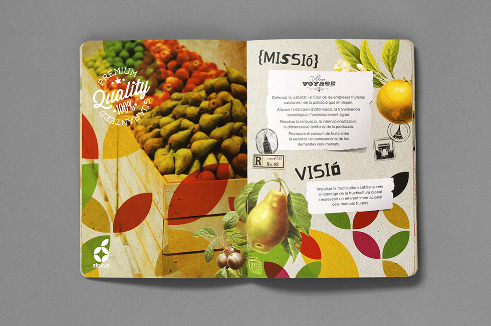 afrucat_brochure_graphic_design_corporate_brand_illustration_inside_page_fruits