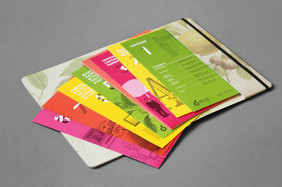 afrucat_brochure_graphic_design_corporate_brand_illustration_inside_page_fruits_a_lettering