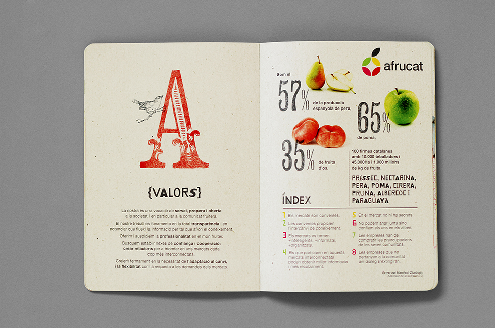 afrucat_brochure_graphic_design_corporate_brand_illustration_inside_page_fruits_a_lettering_composite