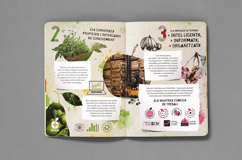 afrucat_brochure_graphic_design_corporate_brand_illustration_moleskine_inside_page_fruits_composite