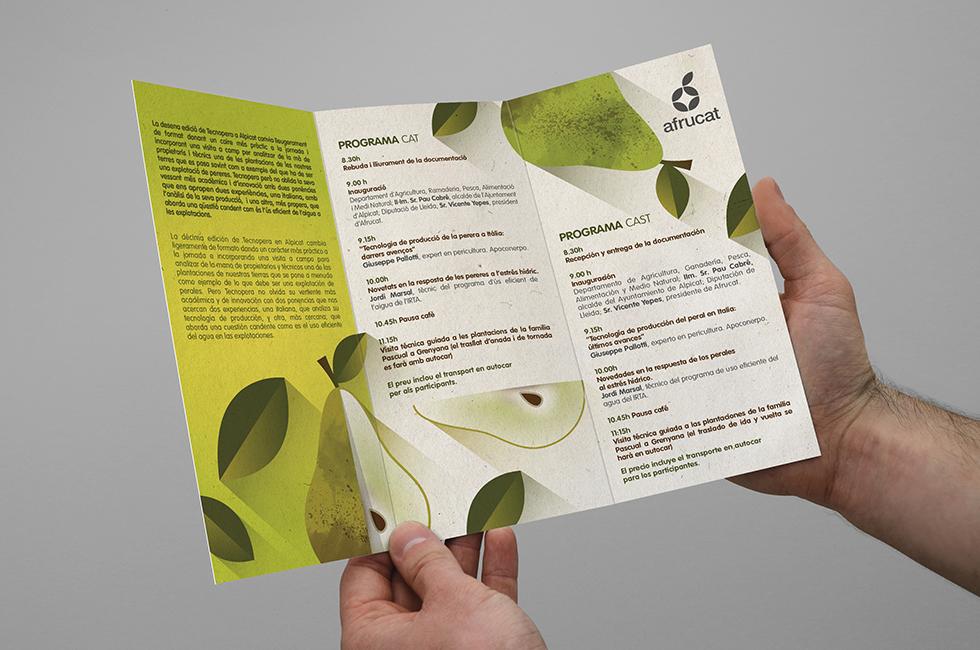 afrucat_season_brochure_illustration_fruit_pear_green_branding_graphic_design_fair