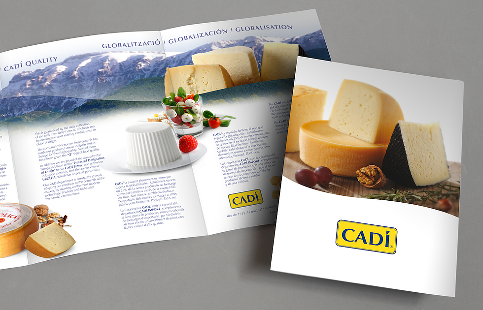 cadi_brochure_branding_corporate_identity_corporate_cow_cheese_milk_mountains_graphic_design_